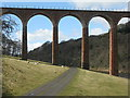 NT5734 : Pasture and track under the Leaderfoot Viaduct by M J Richardson