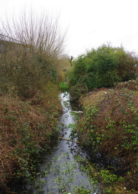 Emma's Dike, near Station Lane, Witney, Oxon