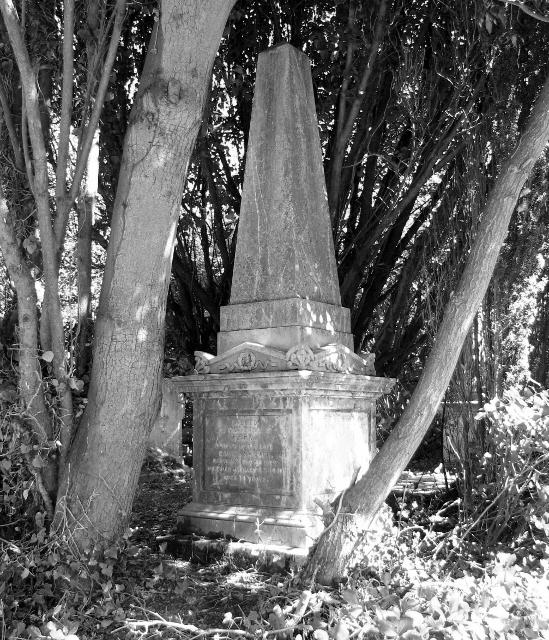 Obelisk in the bushes