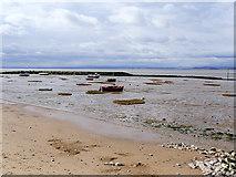 SD4464 : Morecambe Bay, Bare Ayre at Low Tide by David Dixon