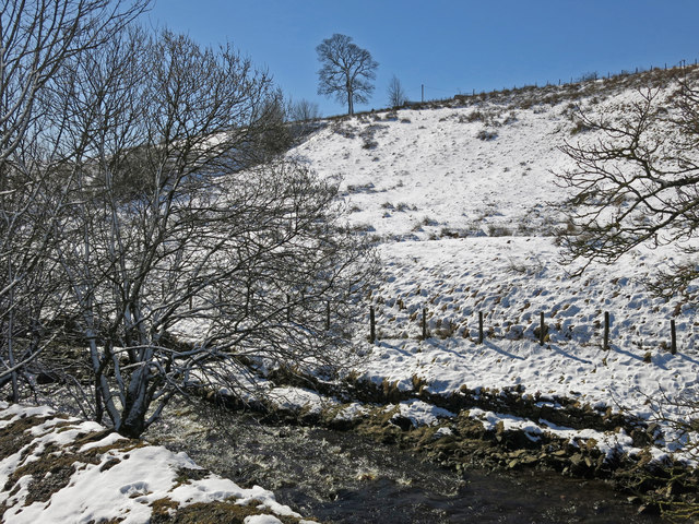 Killhope Burn above Burtreeford Bridge