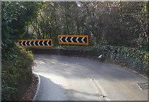 SX9167 : Teignmouth Rd by N Chadwick