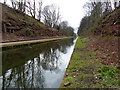SP0592 : Tame Valley Canal at Tower Hill, Birmingham by Mat Fascione