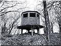 TL9972 : Old Watchtower in Ten Acre Wood by Des Blenkinsopp