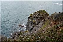 SX9463 : Devonian Limestone, Thatcher Point by N Chadwick