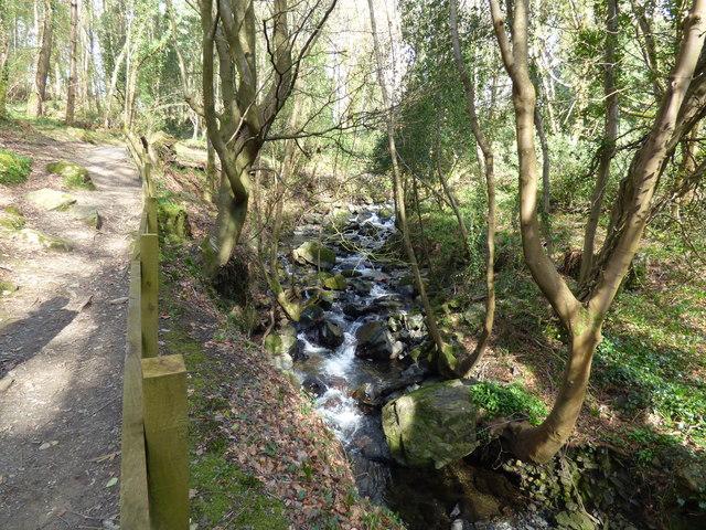 View in Ballaglass Glen