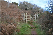 SX9369 : Gate, South West Coast Path by N Chadwick