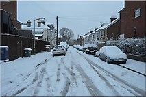 TQ5840 : Snow, Beltring Rd by N Chadwick