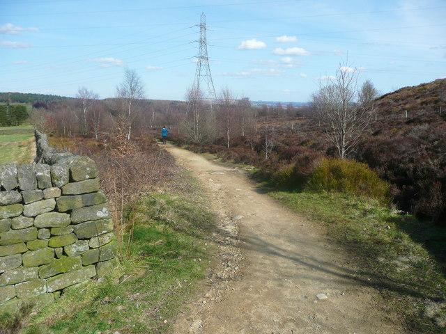 Permissive bridleway along the edge of Harden Moor