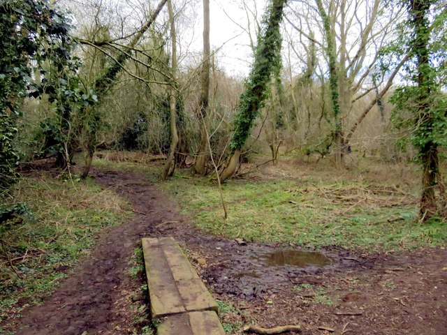 A muddy track on Horspath Common