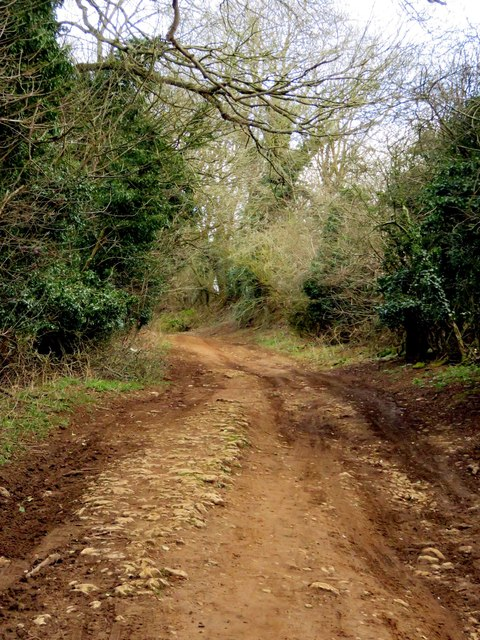 Blenheim Road by Horspath Common