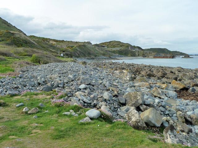 Shore near Lowland Point