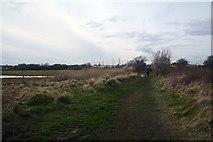 SZ3394 : New Forest : Footpath by Lewis Clarke