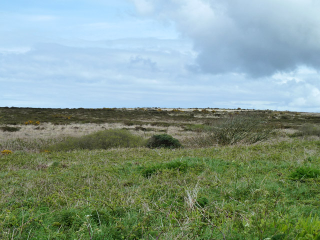 View NE over common land