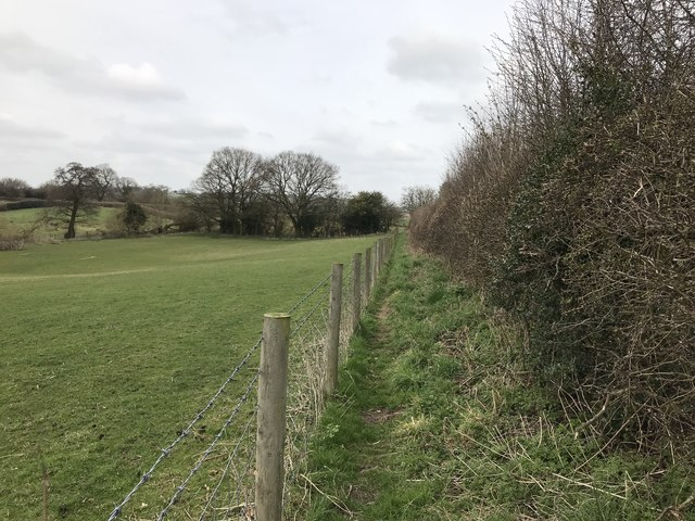 Public footpath along edge of field