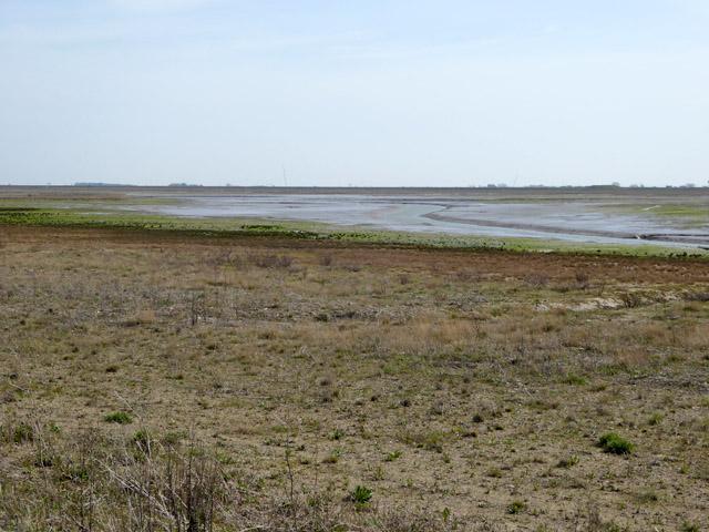 Jubilee Marsh, Wallasea Island