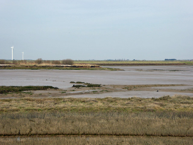 Area given up to the sea near Wallasea Ness