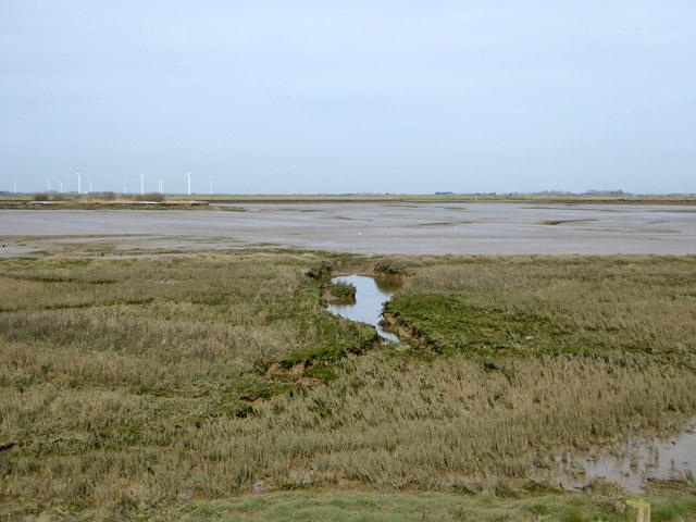 Allfleets Marsh, Wallasea Island