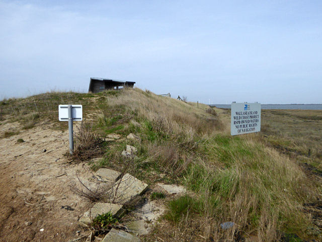 End of sea wall, north of Jubilee Marsh breach, Wallasea Island