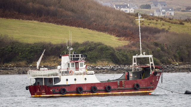 The 'Coll', Fanny's Bay