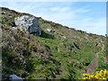 SW4840 : Coastal footpath, Trevalgan Cliff by Robin Webster