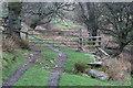 ST1091 : Gate near Caer-moel by M J Roscoe
