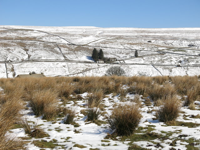 Clarty ground above High Allers