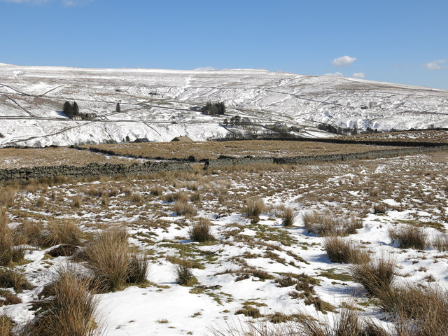 Moorland and rough pastures above High Allers