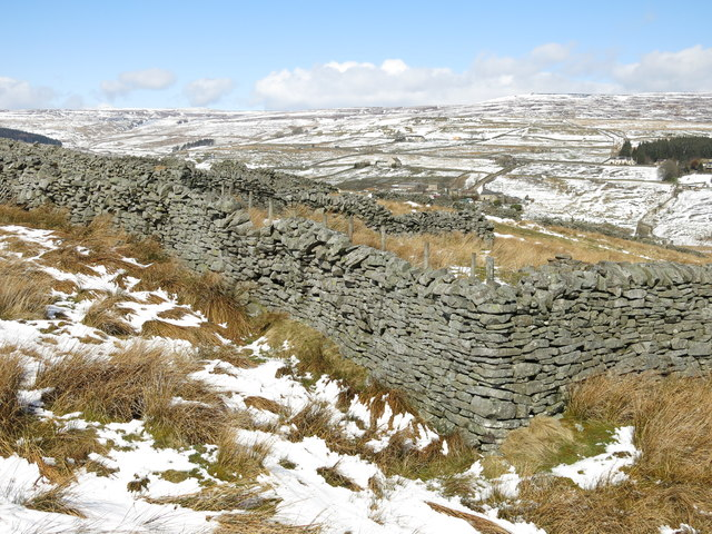 Dry stone walls at Moss House