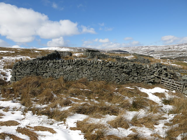 Dry stone walls at Moss House (2)