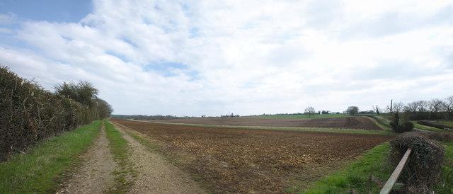 Hillside near Walcot Spinney
