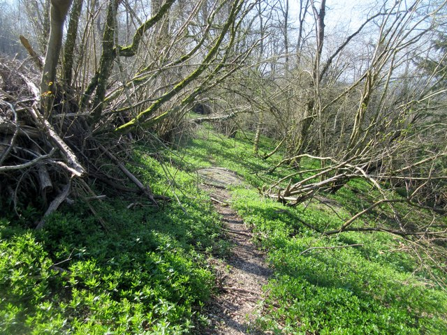 Bridleway to A285