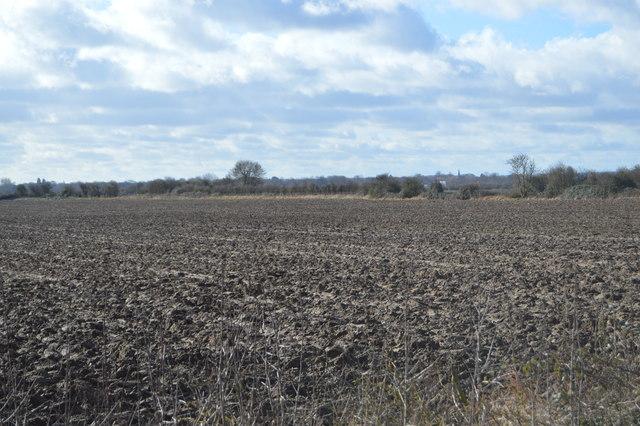 Mill Field