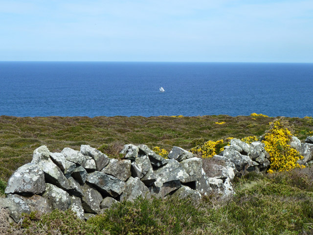 View to sea, Trevega Cliff