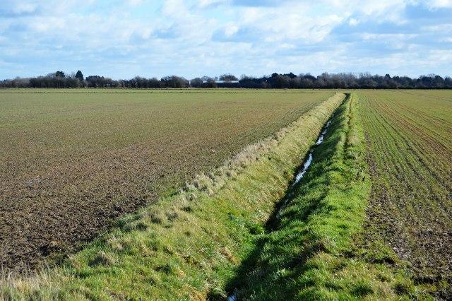 Field ditch
