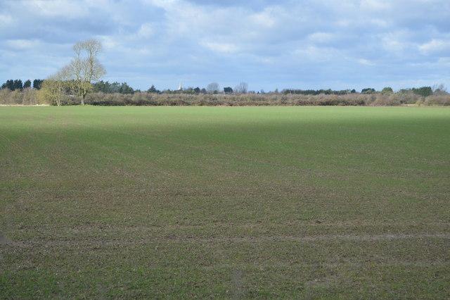 Cadwin Field