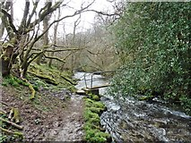 SS9531 : Footbridge over River Pulham by Roger Cornfoot