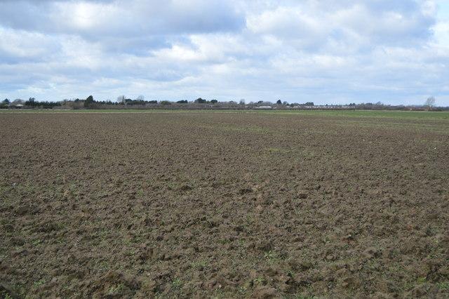 Belsars Field
