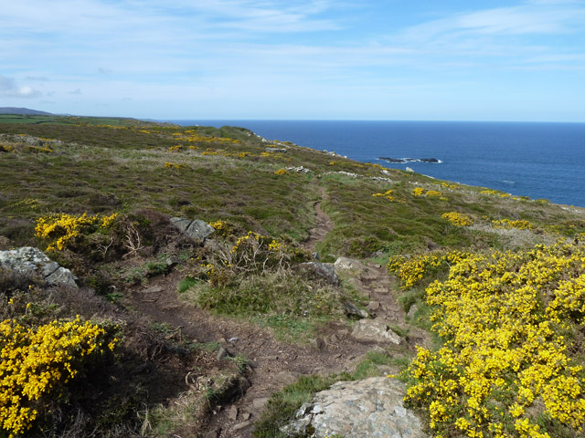 South West Coast path, Trevega Cliff