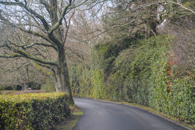 Chichester District : Small Road