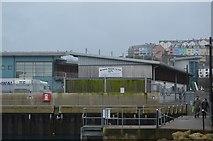SX9256 : Brixham Shellfish Co. Ltd by N Chadwick