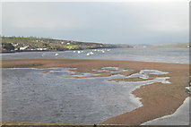 SX9372 : Sandbanks in the Teign by N Chadwick