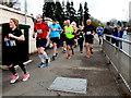 H4572 : Omagh Half Marathon and Fun Run - 242 by Kenneth  Allen