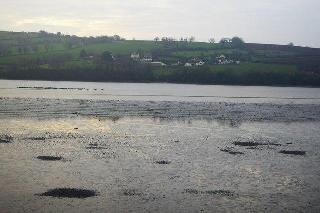 Mud, Teign Estuary