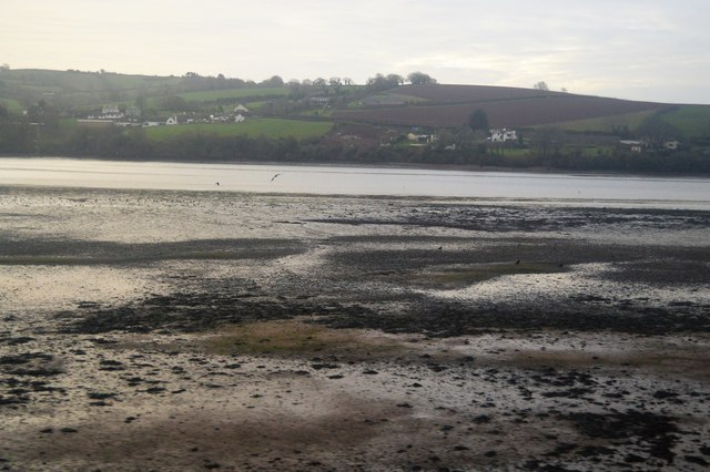Teign estuary