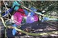 SJ2738 : Umbrellas at Chirk Castle by Jeff Buck