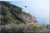 SX9262 : Daddyhole Cove by N Chadwick