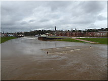 SX9291 : River Exe flood channel in operation by Chris Allen
