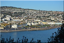 SX9472 : The Den, Teignmouth by N Chadwick