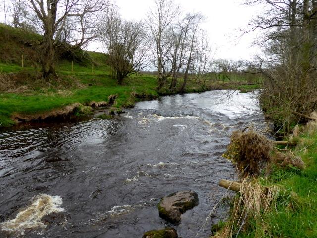 Swirling water, Camowen River, Bracky / Bancran
